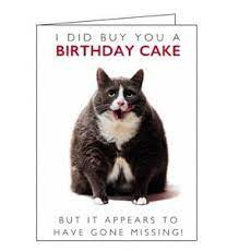 Birthday Card Birthday Cat/ Its Owl about you